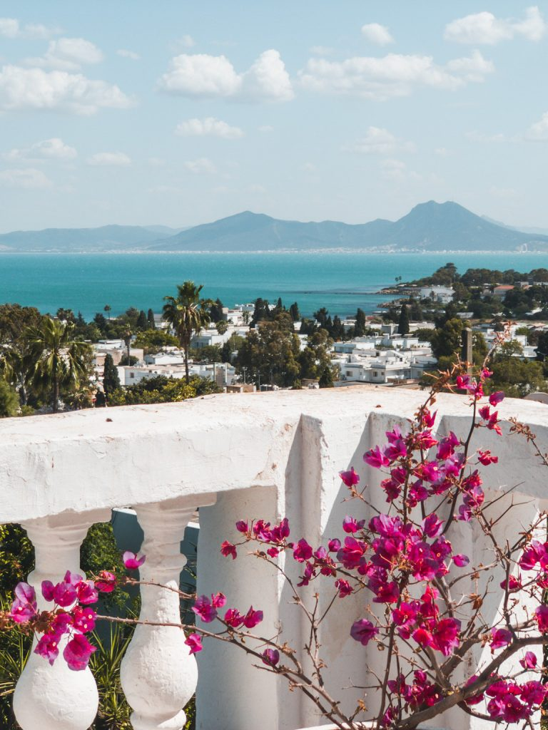 A Guide to The Ruins of Carthage Tunisia