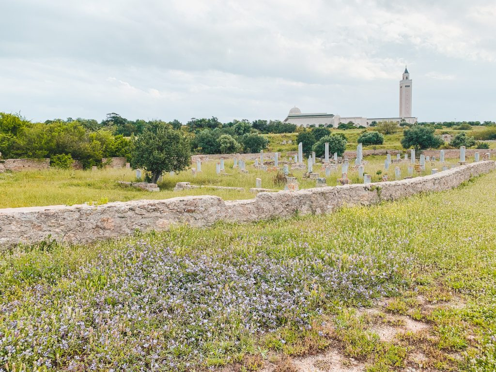 Basilica of Damous El Karita