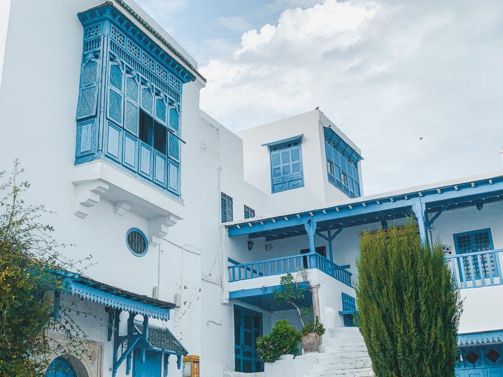 Blue and White Houses of Sidi Bou Said