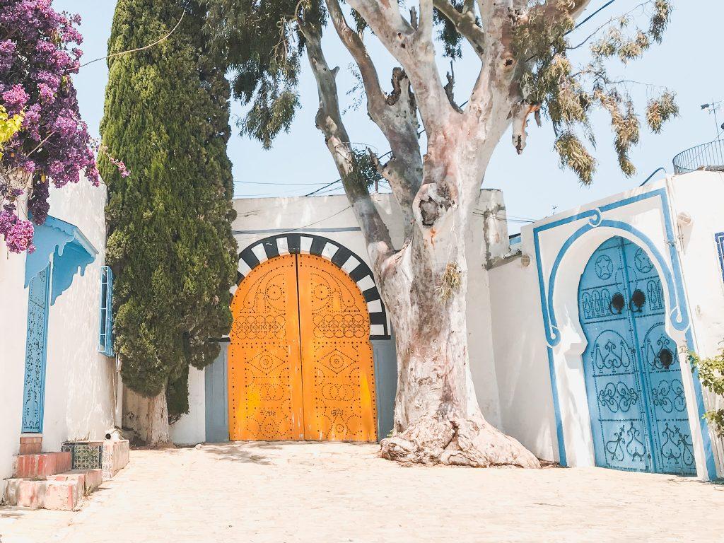 Doors of Sidi Bou Said