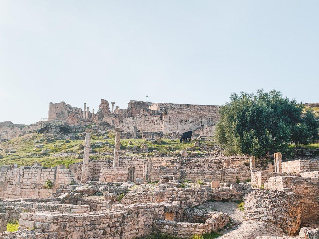 Dougga Ruins in Tunisia
